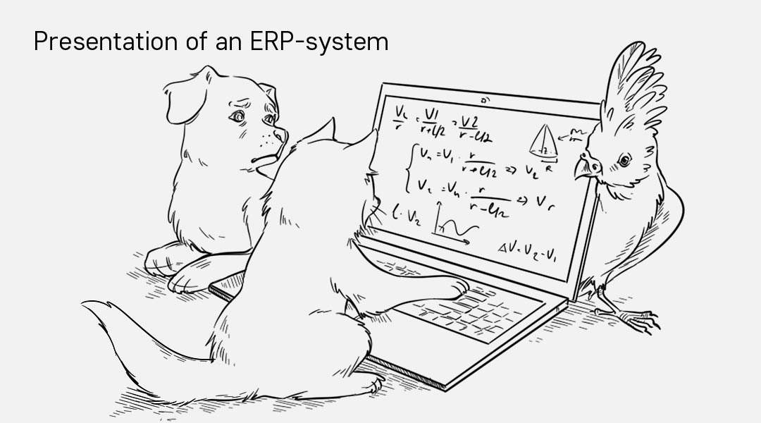 Presentation of an ERP-system